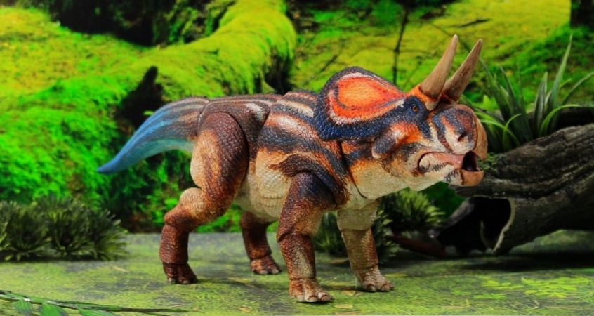 The History of the Zuniceratops