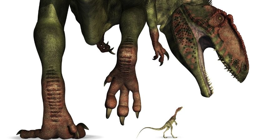 The Tiniest Dinosaurs on Earth