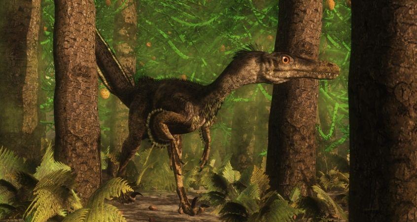 How Velociraptors Hunted Their Prey