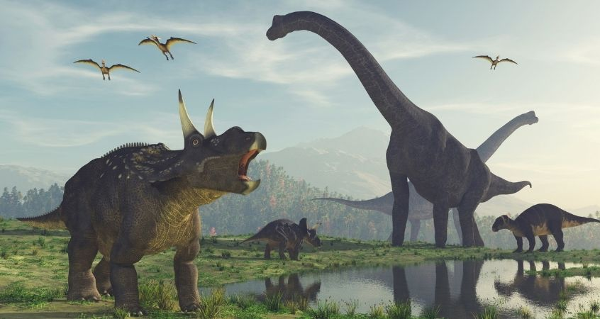 Everything You Need To Know About Dinosaur Diets