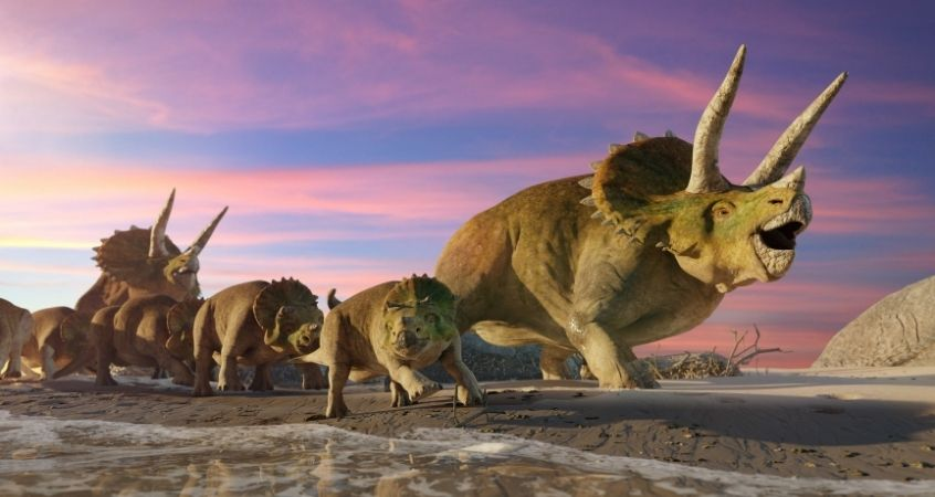Dinosaur Protection: How Dinosaurs Would Fight Off Predators