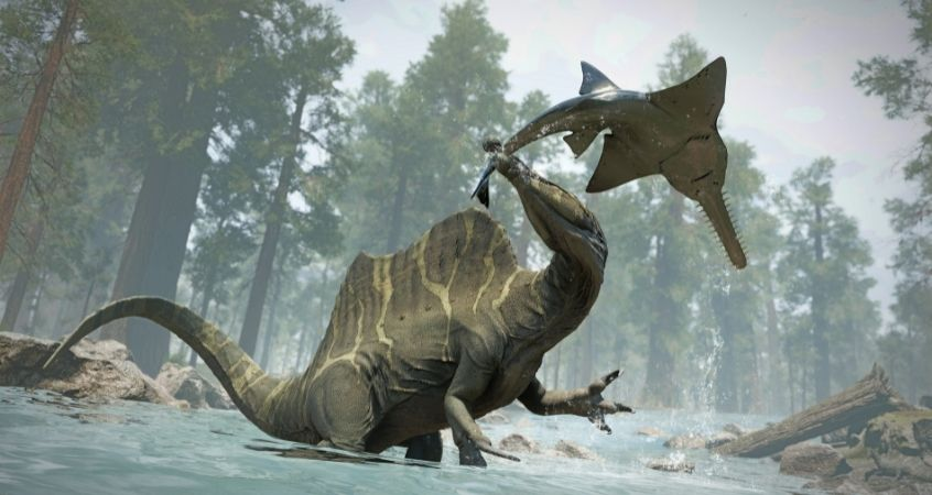 The First Swimmers: The Dinosaurs in the Water